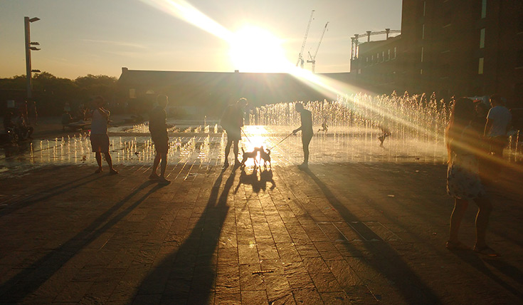 A silhouette image of people and dogs playing in water fountains, standing on a paved floor